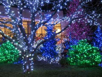 Solar christmas lights seattle maid services seattle all solar christmas lights aloadofball Images