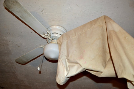 Clean ceiling fan seattle maid services seattle all natural clean ceiling fan aloadofball Choice Image